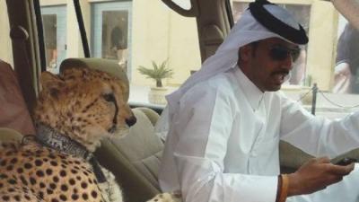 11 choses que vous ne verrez qu'à Dubaï, la ville de la démesure