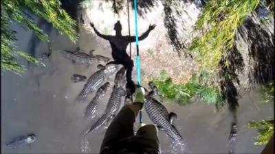 Faire de la slackline au dessus d'une mare infestée d'alligators