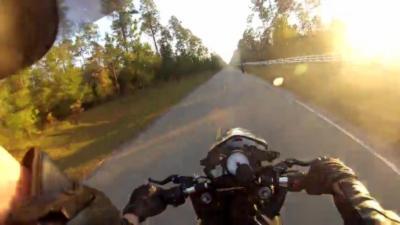 Un motard qui gère très mal sa réception après un wheeling