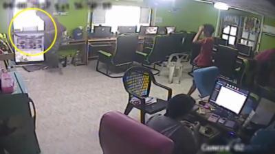 Un homme se fait attaquer par un serpent qui sème la panique dans un cybercafé