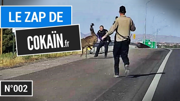 Le Zap de Cokaïn.fr n°002 - 19 minutes de vidéos insolites, de séquences drôles et d'innombrables fails