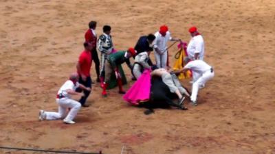 Un militant Vegan se jette sur un taureau pour le protéger pendant une corrida