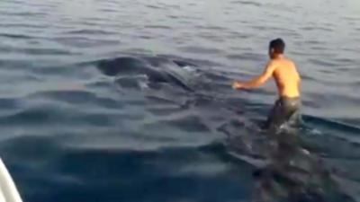 Un pêcheur s'amuse à marcher sur le dos d'un requin-baleine