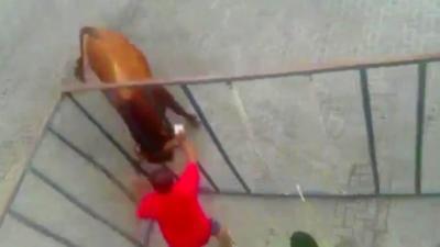 Un homme dans une cage provoque un taureau qui finit par le rejoindre
