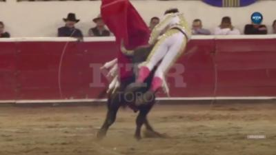 Un taureau plante sa corne dans l'entrejambe d'un torero