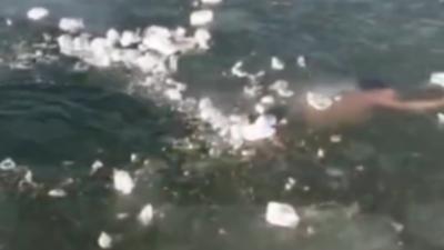 Il nage sous une glace épaisse et passe juste à côté de la sortie