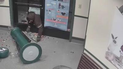 Un homme pénètre dans un refuge de la SPA pour voler un distributeur de bonbons
