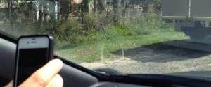 Quand un serpent s'invite sur le pare-brise d'une voiture