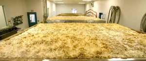 Time-Lapse de 6 jours de fermentation de bière