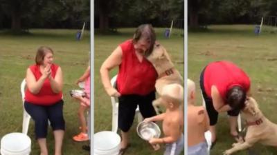 Une femme se fait mordre au visage par son pitbull