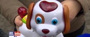 Bobby le petit chien qui veut niquer le monde