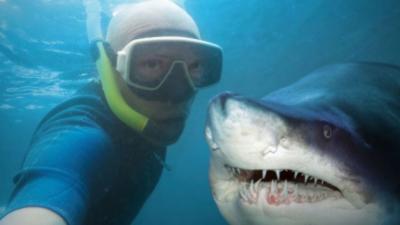 En 2015, les selfies tuent plus que les requins