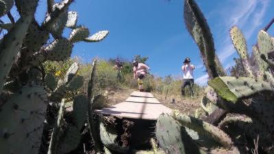 Steve-O défie Zach Holmes de se lancer dans un énorme tas de cactus sans vêtements