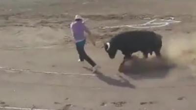Un militant anti-corrida se fait faucher à deux reprises par un taureau