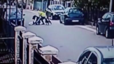 Un chien errant protège une femme lors d'un vol à l'arraché