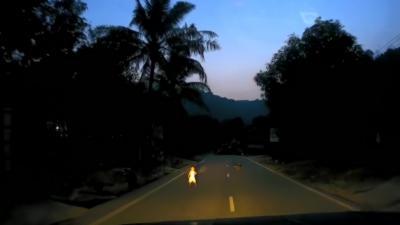 Un automobiliste se retrouve face à un enfant et un chien qui traversent la route en pleine nuit