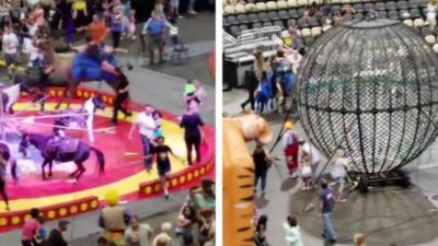 Un chameau pète un câble dans un cirque et malmène sa cavalière