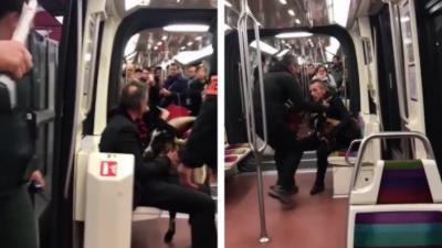 Un homme monte dans le métro avec une chèvre volée dans le Jardin des Tuileries