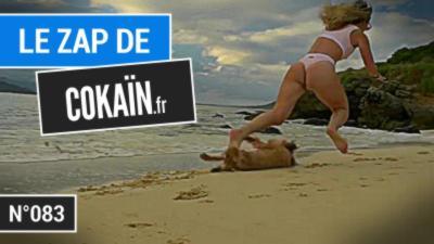 Le Zap de Cokaïn.fr n°083