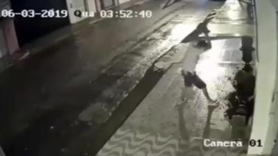 Un homme ivre casse un pot de fleur et se fait instant karma