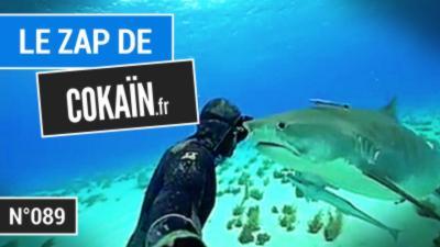 Le Zap de Cokaïn.fr n°089