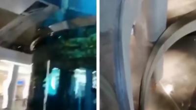 Un aquarium géant d'un million de litres d'eau fuit et inonde un centre commercial russe