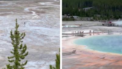 Un homme marche illégalement dans le parc national de Yellowstone pourtant protégé