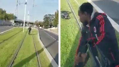 Un cycliste qui roule sur les voies du tramway n'est pas content de se faire klaxonner