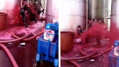 Un vigneron perd l'équivalent de 2 500 bouteilles de vin rouge à cause d'une citerne qui se rompt