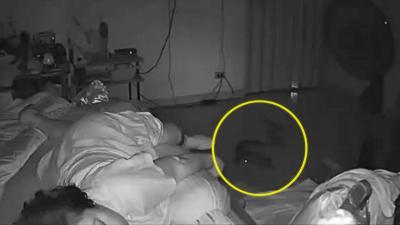 Un serpent s'introduit dans la chambre d'une dame de 75 ans et lui mord le pied