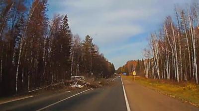 Un arbre tombe sur la route et détruit une voiture qui arrive au même moment