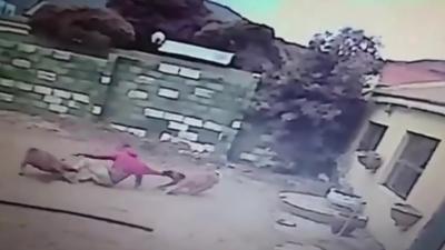 Un cambrioleur tombe sur deux chiens et passe un sale moment