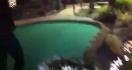 Le meilleur tir au mini-golf